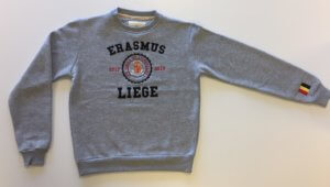 erasmus sweater 2